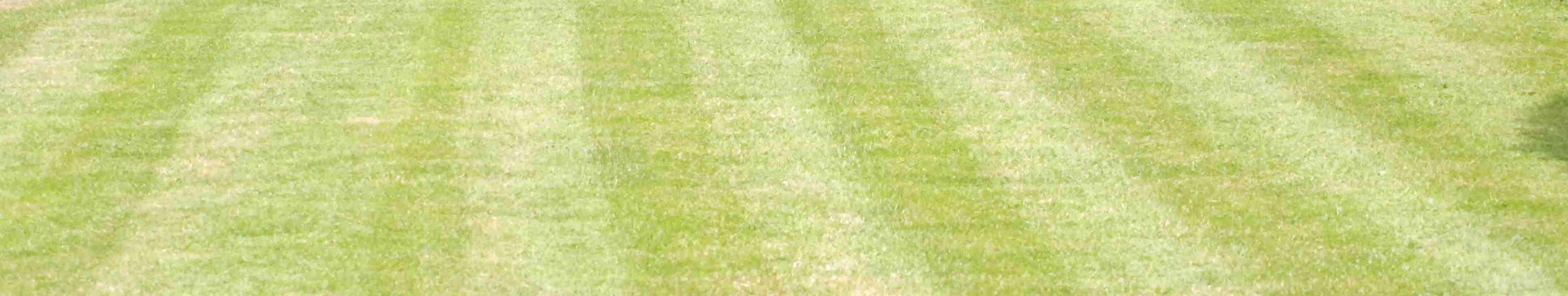 Rasen mit üblichem Streifenmuster.
